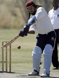 cricket impatto